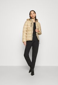 Pepe Jeans - CATA - Winter jacket - stowe - 1