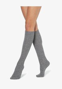 Calzedonia - Knee high socks - grigio melange - 0
