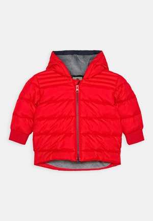 PUFFER JACKET BABY - Zimní bunda - bright red