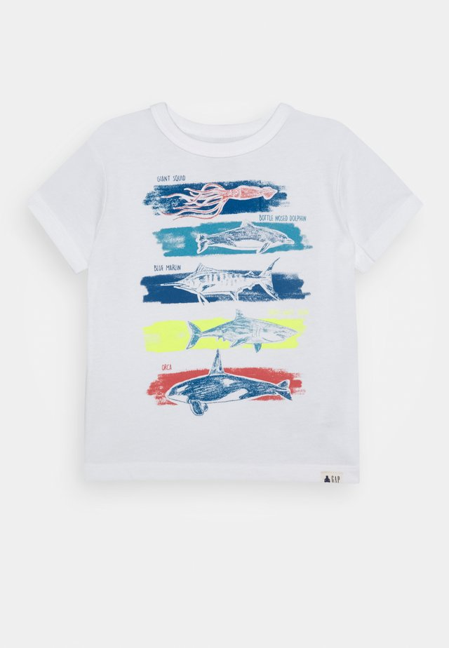 TODDLER BOY GRAPHICS - T-shirt con stampa - new off white