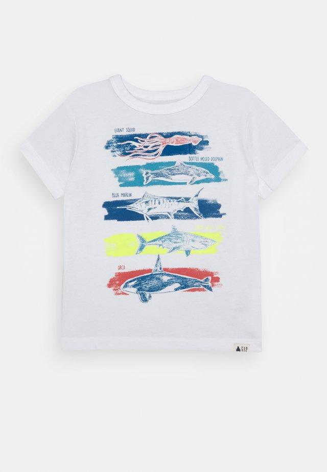 TODDLER BOY GRAPHICS - T-shirt z nadrukiem - new off white