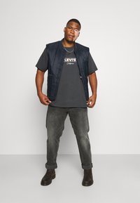 Levi's® Plus - BIG GRAPHIC TEE - T-shirt med print - dark shadow - 1