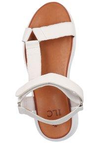 ILC - Sandales de randonnée - white - 3