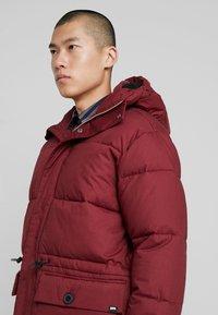 Edwin - Winter coat - ruby wine - 3
