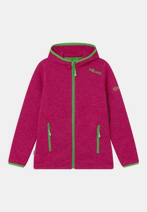 JONDALEN  - Fleece jacket - pink/green