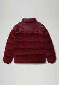 Napapijri - A-KAMPPI - Winter jacket - vint amarant - 5