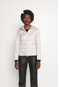 Max Mara Leisure - PITTORE - Winter jacket - platino - 0