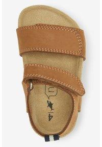 Next - Walking sandals - brown - 1