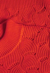 Selected Femme - SLFEVALINE  O NECK - Strickpullover - orange