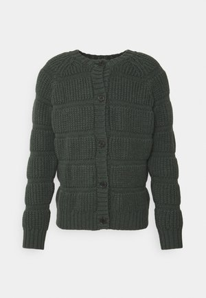 CHUNKY TUBES CARDI NO POCKETS - Kardigan - moss green