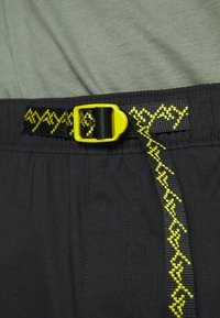 The North Face - CLASS V BELTED - Outdoor shorts - black/mustard yellow - 3