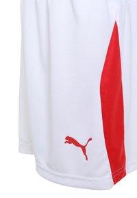 Puma - LIGA - Korte sportsbukser - white/red - 2