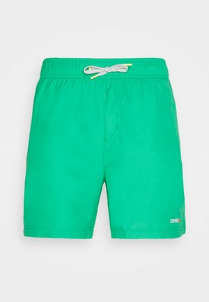 MELSTONE - Outdoor shorts - leaf green