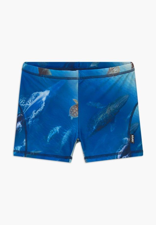 NORTON - Swimming trunks - above ocean