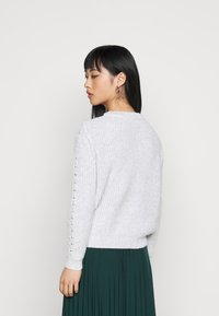 Dorothy Perkins Petite - POINTELLE CABLE  - Jumper - light grey - 2
