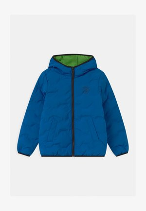QUILTED HEXAGONS - Winter jacket - blue eleos