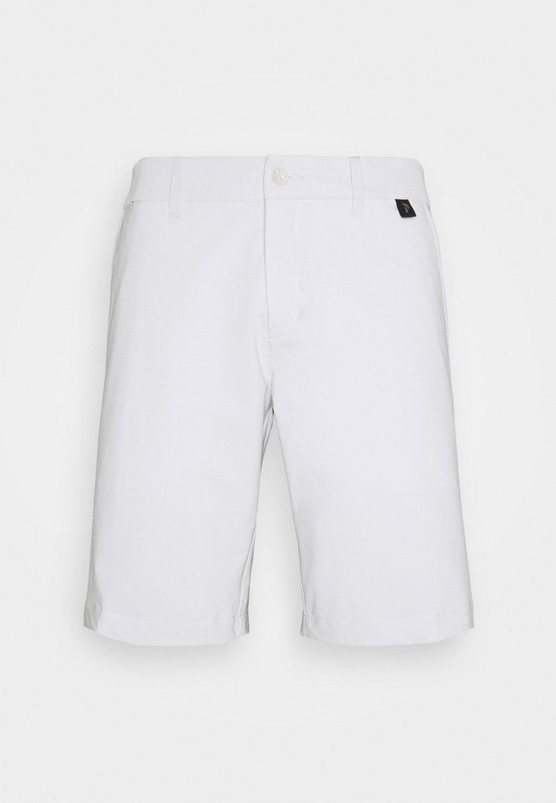 Peak Performance - FLIER SHORTS - Sports shorts - antarctica