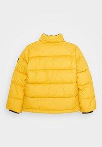 Calvin Klein Jeans - ESSENTIAL PUFFER JACKET - Zimní bunda - yellow - 2