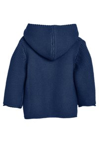 Next - Strikjakke /Cardigans - blue - 1