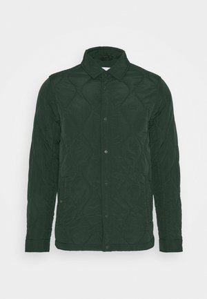 Light jacket - sinople