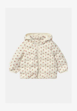 PUFFER HOOD - Winter jacket - ivory frost