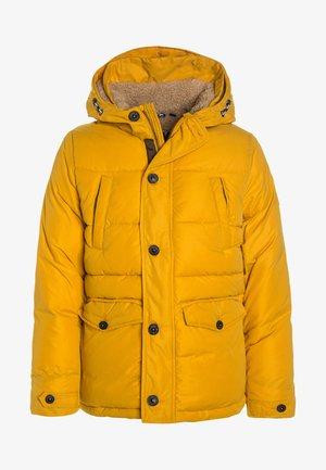 HOOD - Winter jacket - golden yellow/yellow