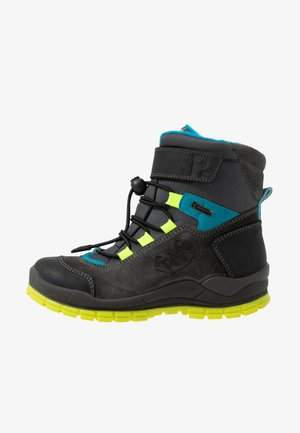 Winter boots - grey/black