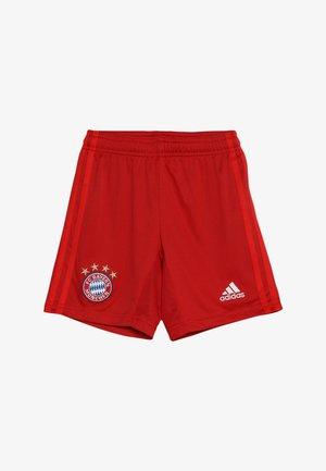 FC BAYERN MÜNCHEN H SHO Y - Sports shorts - true red