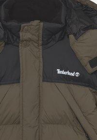 Timberland - PUFFER - Winter jacket - khaki - 3