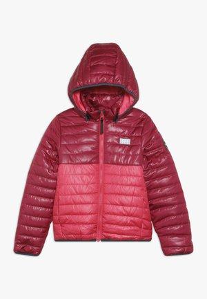 JOSHUA JACKET - Winter jacket - bordeaux