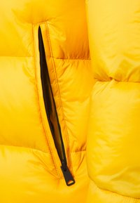 Napapijri The Tribe - TAMMIKUU UNISEX - Veste d'hiver - yellow solar - 2