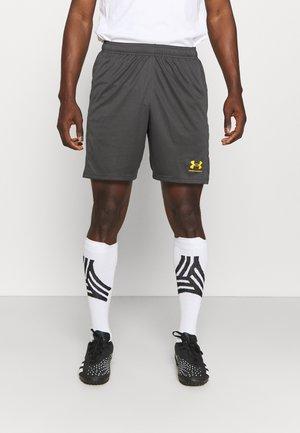 CHALLENGER SHORT - Short de sport - grey