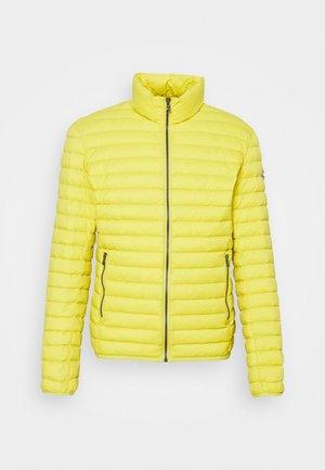 MENS JACKETS - Piumino - yellow