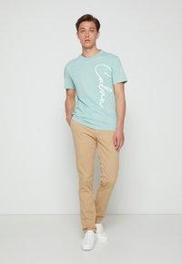 Calvin Klein - SUMMER SCRIPT LOGO - T-Shirt print - green - 1