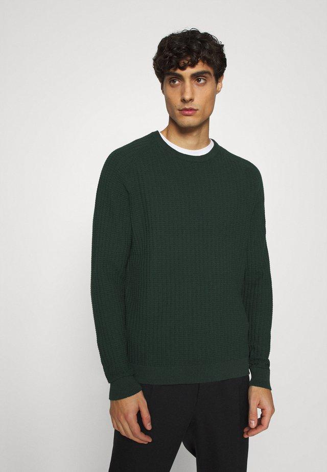 KASPER RAGLAN  - Pullover - scarab