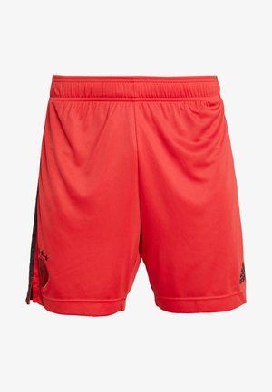 AD542E1NX-G11 - Sports shorts - glory red