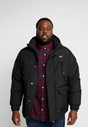 PLUS  - Down jacket - black