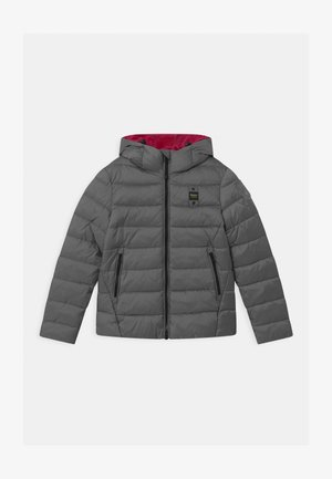 GIUBBINI CORTI IMBOTTITO OVATTA - Winter jacket - grey