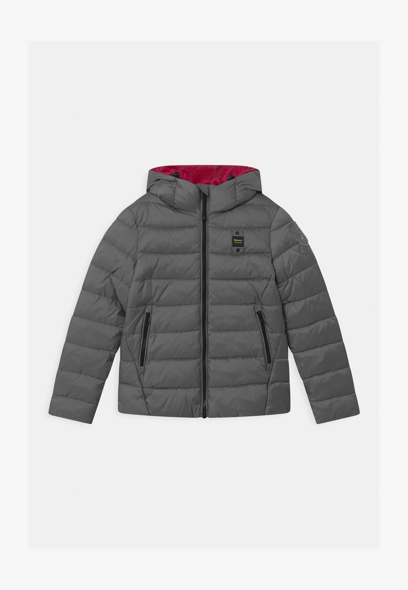 Blauer - GIUBBINI CORTI IMBOTTITO OVATTA - Winter jacket - grey