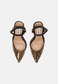 Steve Madden - ALESSI - Classic heels - brown - 4