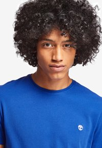 Timberland - DUNSTAN  - Basic T-shirt - surf the web - 4