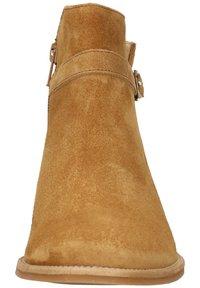 Paul Green - Ankle boots - cognac-braun - 6