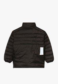 Molo - HAKAN - Winter jacket - brown darkness - 2