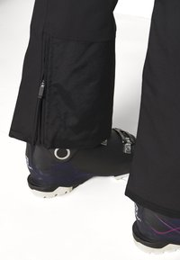 The North Face - LENADO PANT - Snow pants - black - 5