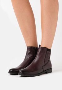 Marco Tozzi by Guido Maria Kretschmer - Ankle boots - bordeaux - 0