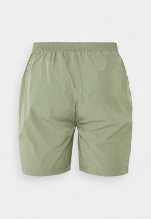 HAKIM - Pantalón corto de deporte - sea spray