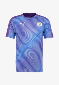 Vereinsmannschaften - tillandsia purple/team light blue