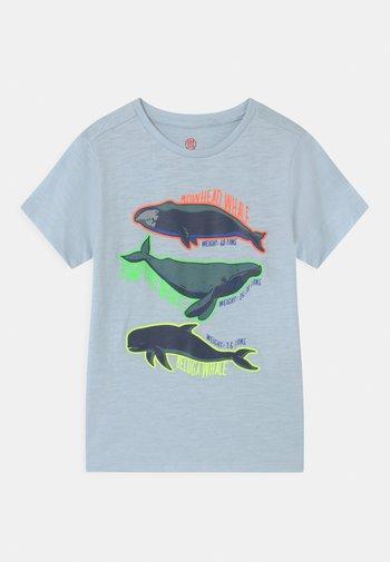 SMALL BOYS  - Print T-shirt - skyway