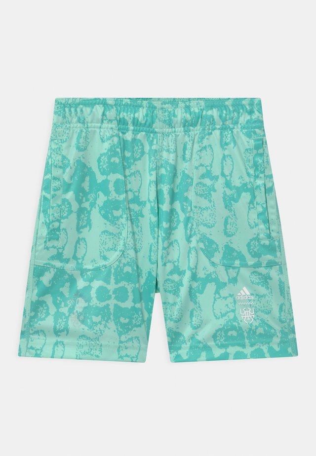 UNISEX - Pantalón corto de deporte - clemin
