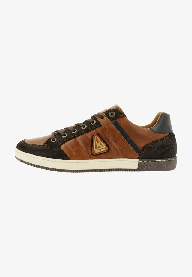 WILLIS TRM - Sneakers laag - cognac-brown